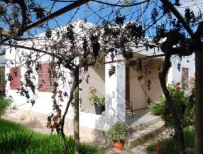 Niki agency ibiza su inmobiliaria en ibiza for Ciudad jardin ibiza